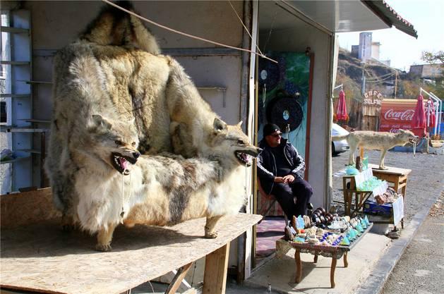 Auf dem Markt von Sewanawank zeigen die Wölfe ihre Zähne. Was für Tierschützer ein Graus ist, freut wohl einzig...