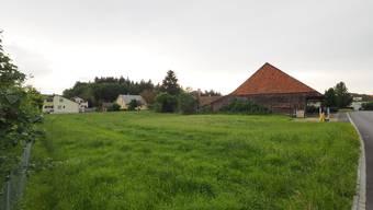 Das Grundstück Chrüzweid soll aus raumplanerischer Sicht für knapp 2 Mio. Franken an die Einheitsgemeinde Fulenbach gehen.