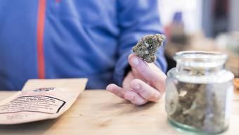 Studie soll kontrollierte Abgabe von Cannabis zu Genusszwecken ermöglichen. (Symbolbild)