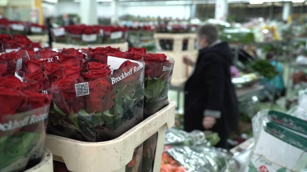 Rote Rosen zum Valentinstag: Hochbetrieb an der Blumenbörse Bern