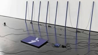 «Blooming Bloody Spider» von Lea Schaffner an der Auswahl 20. Eine Arbeit mit Video, Audio, Lichtröhren.