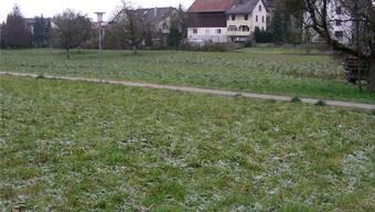 Auf der Zentrumswiese planen die Würenloser ein Alterszentrum. Foto: Dieter Minder