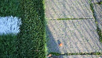 Auf den Platten neben dem Kunstrasenfeld der Wohler Niedermattenanlage kann man sehen, was Kritiker an verfüllten Kunstrasen stört das Plastikgranulat.