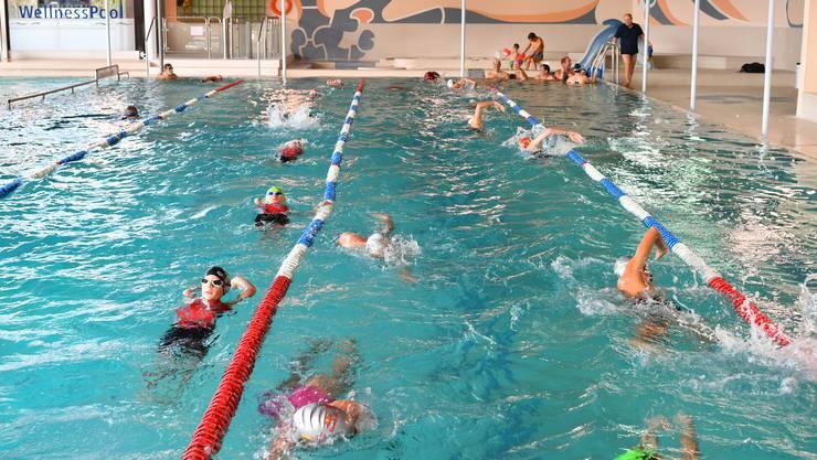 Schwimmer trainieren im Hallenbad. (Archiv)