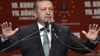 Der türkische Regierungschef Erdogan bei seinem Auftritt in Köln