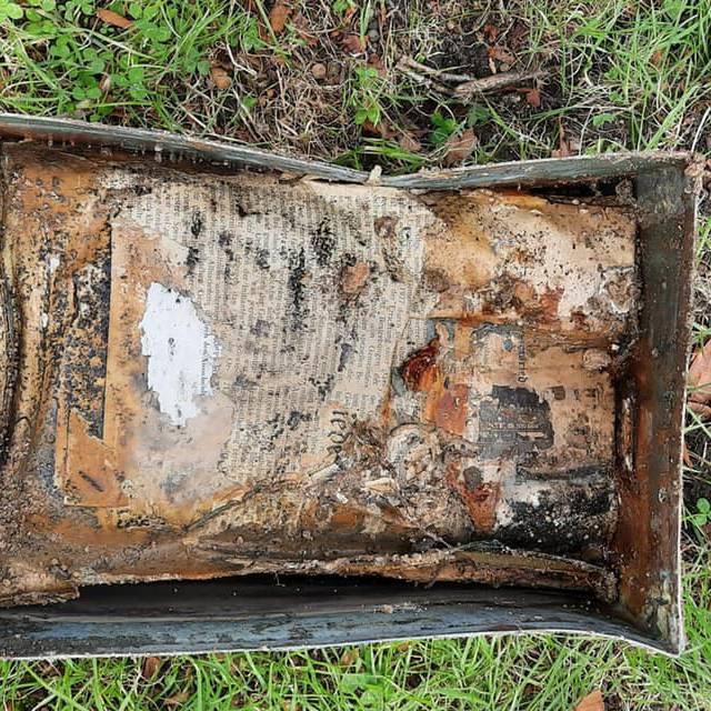 Zeitkapsel unter umgestürztem Baum in Zürich gefunden