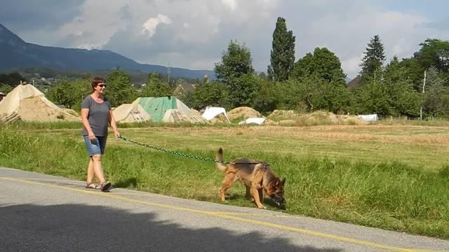 Heike Mund erzählt, wie ihr Hund Garo die tote Frau im Graben entdeckte
