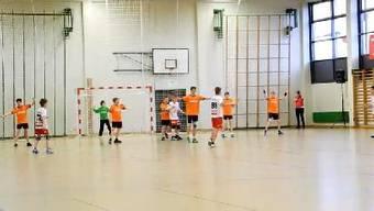 U13 Handball- und Volleyball Schweizermeisterschaft im Fricktal: Handballmannschaft von Möhlin U13