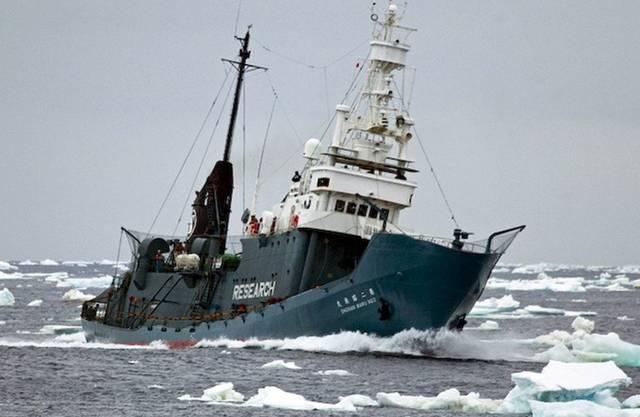 Die japanische Walfangflotte sticht in See. (Archiv)
