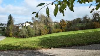 Die Parzelle 954 an der Kasernstrasse im Südosten von Menziken wird von der Wohnzone 2 der Landwirtschaftszone zugeteilt.