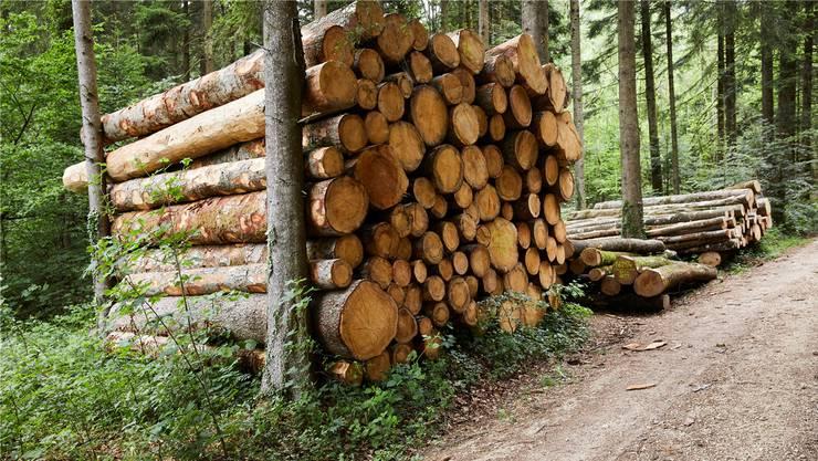 In den Wäldern muss viel Holz geschlagen werden: Der Verband der Schweizer Waldbesitzer spricht deshalb von einer «Holzschwemme».