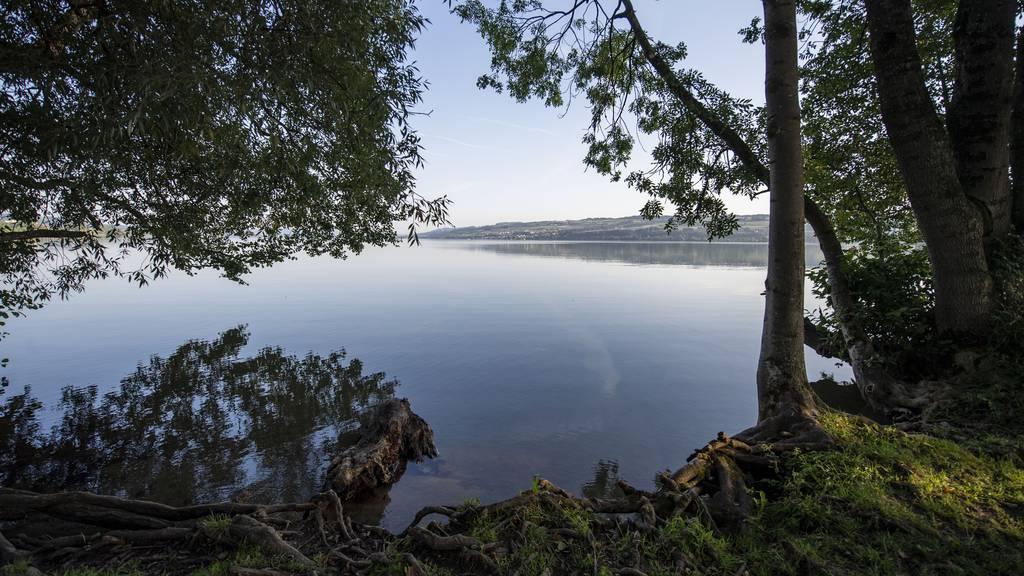 Gefahr für Wassersportler und Fussgänger: Polizei warnt vor umstürzenden Bäumen