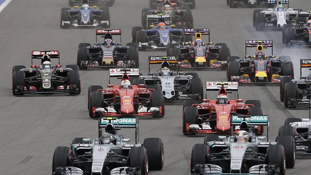 Bei 20 Rennen gehen die Formel-1-Fahrer im Jahr 2017 an den Start. Der GP von Deutschland auf dem Hockenheimring fehlt jedoch im Kalender