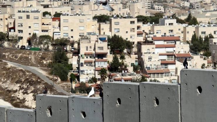 Eine jüdische Siedlung nördlich von Jerusalem. Die EU schreibt vor, dass Produkte aus Siedlungen gekennzeichnet sein müssen. (Archiv)