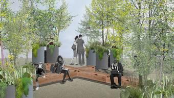 Holzbänke und Sträucher sollen das Gefühl eines «Urban Forest» vermitteln: Die Stadt Winterthur will den Merkurplatz neu gestalten.