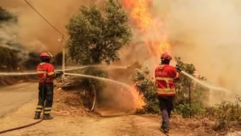 Viele Feuerwehrleute kommen mit dem, was sie im Ernstfall sehen, nach dem Einsatz nicht klar.