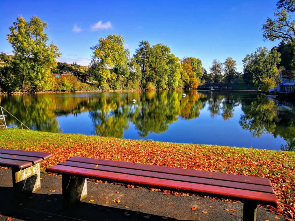 Herbstliche Stimmung auf Drei Weieren in St.Gallen