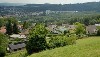 In Riniken genehmigt die Gemeindeversammlung sämtliche Geschäfte.