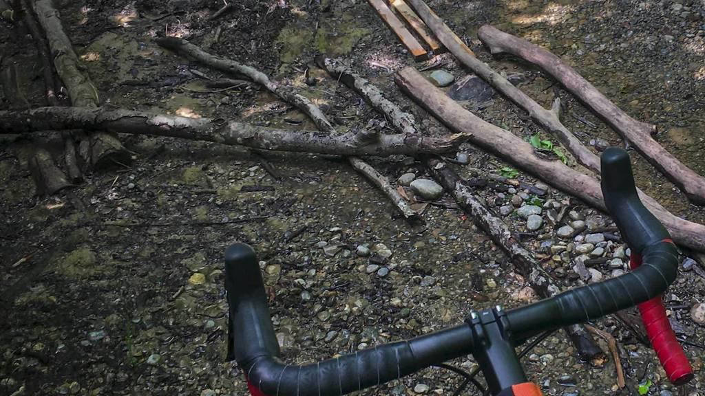 Zoff im Wald: Hundehalter verbarrikadieren Biketrails