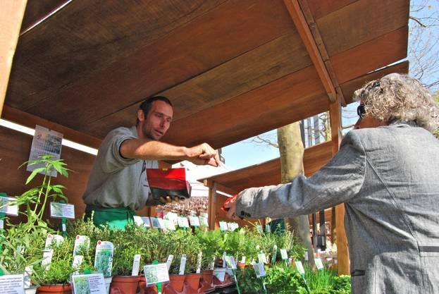 Kräuter fürs eigene Beet, verkauft Bernard Brändli