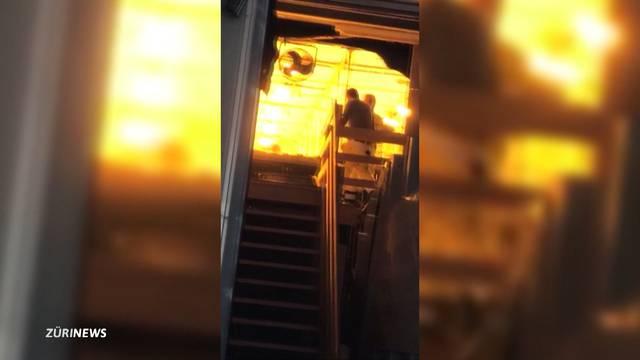 Polizei hebt Indoor-Hanfanlagen aus