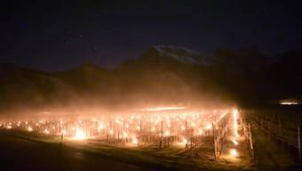 Fläsch - 27.04.16 - Mit Wärme wollen die Weinbauern in der Bündner Herrschaft drohenden Schaden durch Frost abwenden. Sie haben hunderte Frostkerzen angezündet. Die Kerzen brannten bis in die frühen Morgenstunden.