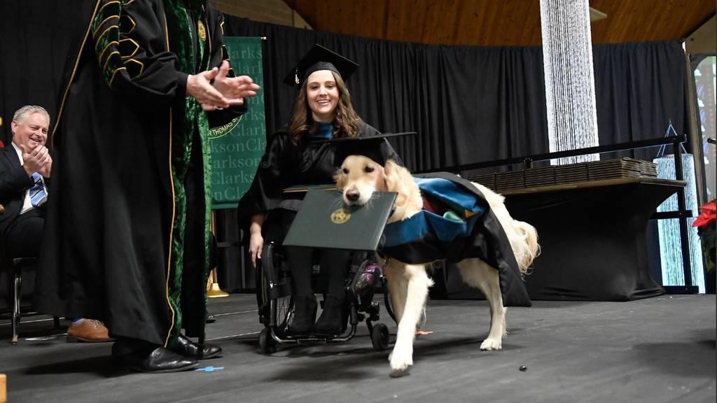 Hund mit Uni Abschluss 2