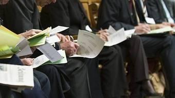 Parlamentarier bei der Richter-Wahl (Archiv)