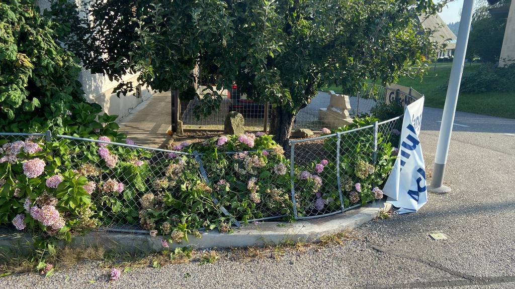 Autofahrer prallt gegen Gartenzaun und flüchtet