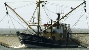 Fischerboot in der Nordsee (Archiv)