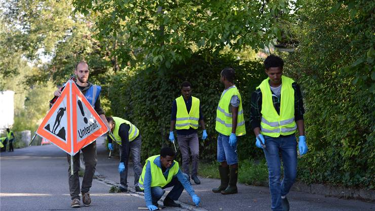 Eine Gruppe Asylsuchender entfernt Unkraut auf den Strassen Arlesheims – eine Arbeit, für die der Werkhof keine Ressourcen hat.