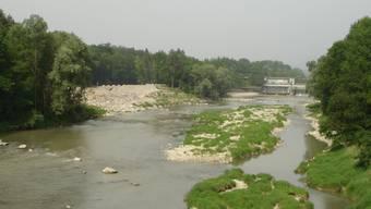 Schafft viele neue Lebensräume: der neue Flussarm (links im Bild).