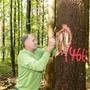 «Der Wald muss klimafit werden», sagte Oliver Frey, Präsident des Forsterverbandes, letzten Sommer zur AZ. Nun präsentiert die Regierung Lösungen für den Wald.