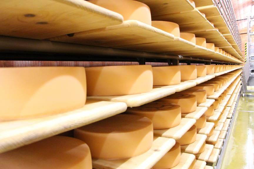 Die Lagerung gibt dem Käse den Geschmack. © FM1Today/Lara Abderhalden