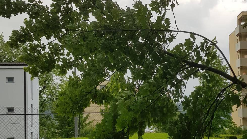 Unwetter tobte in Luzern