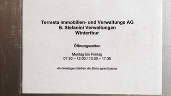Ein Leben für Immobilien und Kunstschätze: Am Freitag ist Bruno Stefanini verstorben. (Archivbild)