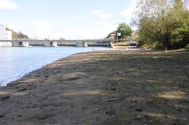 Teile der Aare, welche sonst unter Wasser stehen, sind nun trocken.