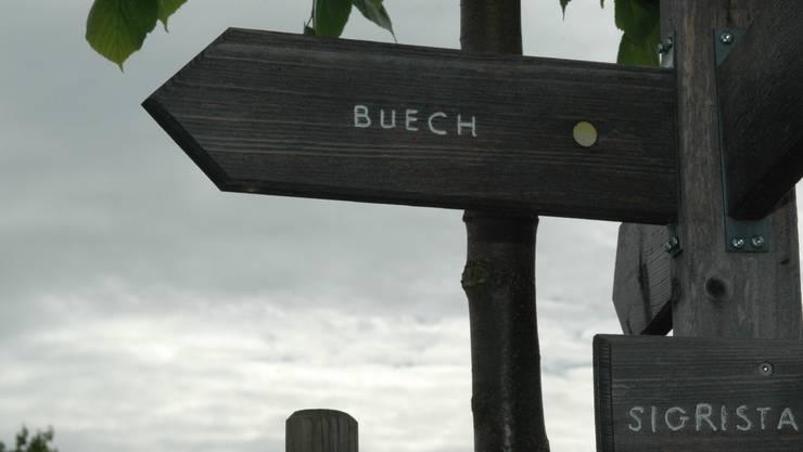 Im Waldgebiet «Buech» im Rünenberger Bann liegt eine der 204 Walddauerbeobachtungsflächen.  ueli Frei