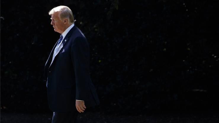 Die anonymen Anfeindungen aus den eigenen Reihen könnten ihm am Ende sogar nützen: US-Präsident Donald Trump.
