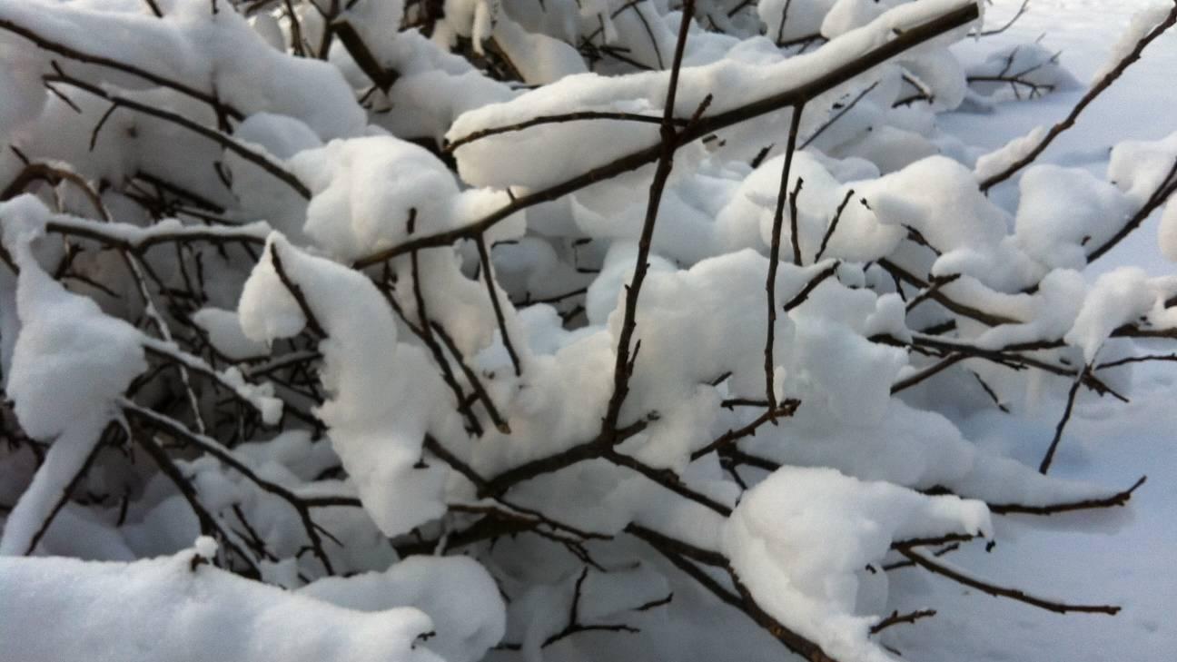So viel Schnee wie selten im Oktober
