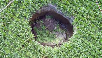 Das Loch ist etwa sechs Meter breit und drei Meter tief. Fotos: Bruno Kissling