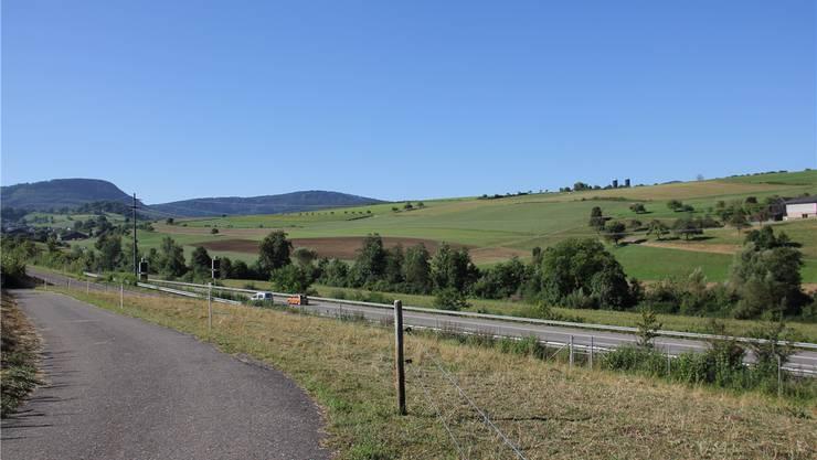 Zwischen den Landwirtschaftsbetrieben im Lindental (am rechten und linken Bildrand) an der A3 soll während 10 bis 15 Jahren eine Aushubdeponie betrieben werden.
