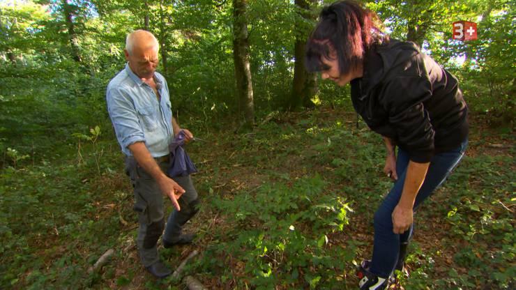 Sie gehen Pilze sammeln. Jolanda ist eine passionierte Pilzsammlerin.