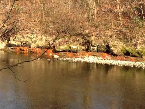 Am Wochenende war aufgrund tiefem Wasserstand der Emme, das Deponiesickerwasser gut erkennbar.