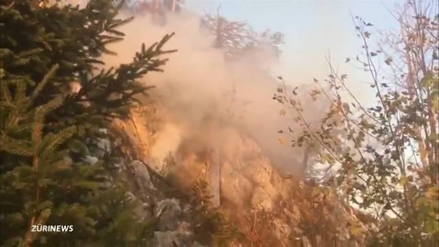 Tausend Quadratmeter Wald in Amden wegen Brand zerstört