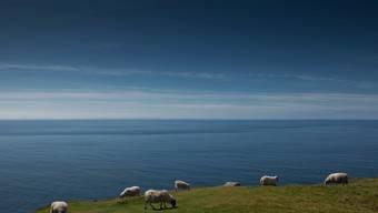 Schöne Landschaft, kriselnde Wirtschaft: Irland