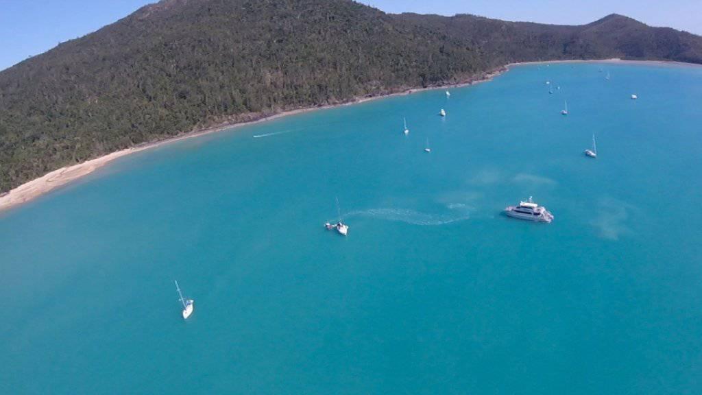 Im Gebiet um die Whitsunday-Inseln vor Australiens Ostküste wurden gleich zwei Frauen Opfer von Haiangriffen.