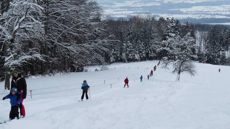 Streckenlänge: 1200m, ca. 700 M. ü. M., Infos unter der Telefonnummer  056 668 90 70 oder auf www.skilift-horben.ch.