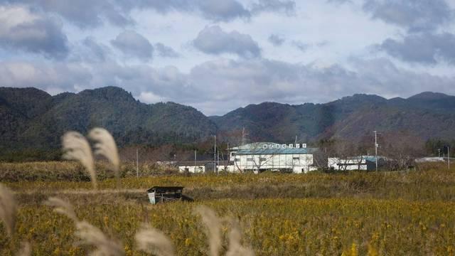 Von blossem Auge ist die Verseuchung des Bodens in Japan nicht sichtbar (Archiv)