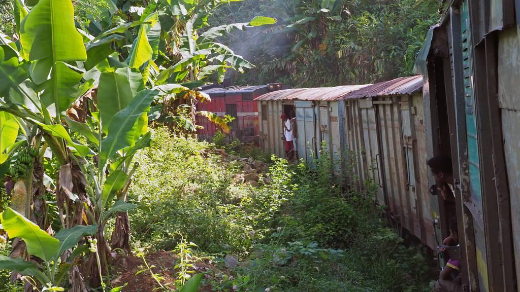 Madagaskars grossartiger Dschungelzug